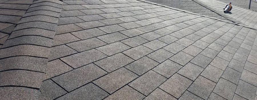 Roof Repair in Mississauga
